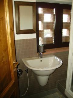 Bagno - particolare lavabo e doccia