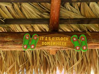 Its 5 O'Clock Somewhere - Bring your pet, Fenced yard with large TIKI Hut!, Galveston