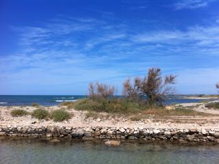 Case Vacanza a Lido Marini a 250 e 500 mt dalla spiaggia