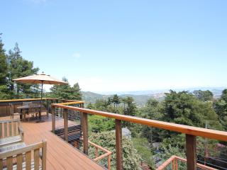 Spectacular views overlooking Mill Valley