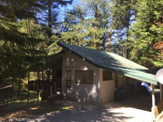 Cozy and Private House w/Sauna and Pool Access, Packwood