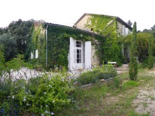 Avignon grande  belle maison de famille dans parc