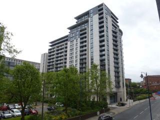 Luxury Apartment in the Heart of Birmingham city