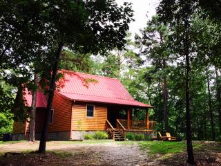 Luxury cabin in the Ouachita Mtns,& Lake Ouachita, Mount Ida