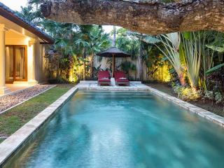 Bali Zen Villas Umalas 2