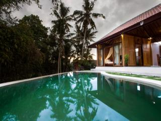 De Angga Villa Ubud - Private 2 bedroom