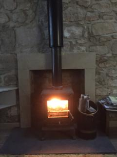 Multi fuel stove is just super