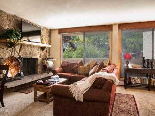 Scorpio Condo, No Car Necessary, Located on Free In-Town Bus Route, Heart of, Vail