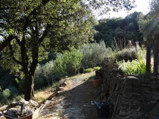 GIte insolite sur hauteurs de Roquebrun