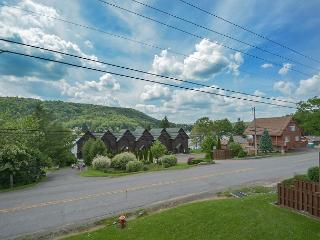 Enjoy lake & ski slope views and a prime location!