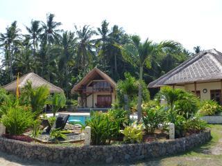 Villa Matahari, new, idyllic, 14 m pool,East Bali