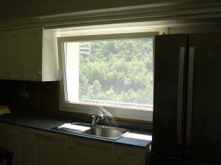 La finestra sul verde