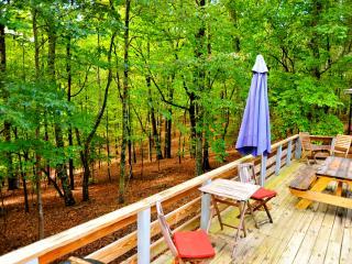 Deck overlooking pristine woods.