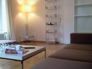 lovely 3 room flat, dish washer, bath tub, wifi&tv, Zürich