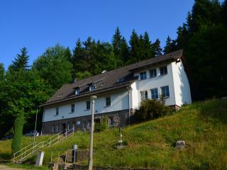 Ferienhaus Lütsche - App. Parterre groß