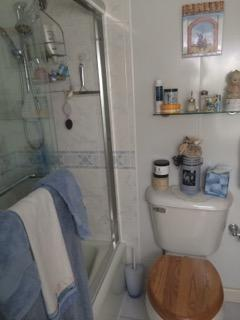 Bathroom with fancy overhead shower head as well as a separate hand held shower head