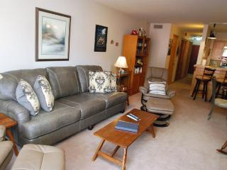 Ski Run Condominiums 203 - Walk to slopes, ski area views, spacious accommodations, pool!, Keystone
