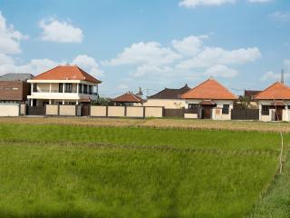 The property surrounded by the Rice field and walking distance to Berawa beach