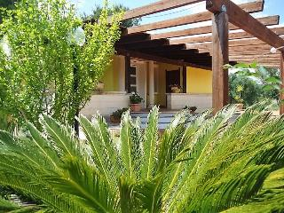 Villa in the countryside with swimming pool for summer vacation rentals in Parab