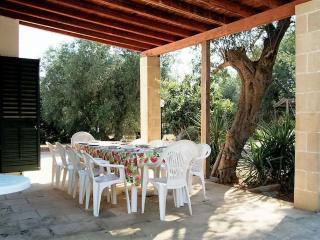 Country house for rent in Salento Apulia in Casarano immersed among olive trees