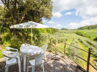 Organic farm tucked away in the Tuscan hills, Montaione