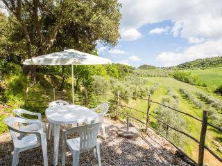 Agriturismo biologico immerso nelle colline toscane, Montaione