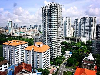 FABULOUS 3 BR ROOFTOP PENTHOUSE at CITY, Singapour