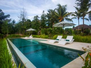 Vista, Garden Villa, 1 Bedroom Large Pool, Central Ubud