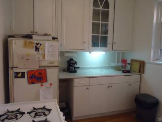 2 Bedroom Apartment, Bright, with Terrace, Montreal