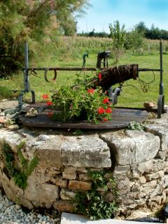 Beautiful old well in front garden.