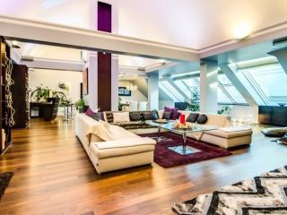 Modern and unique penthouse, Vienne