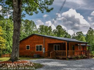 MY DEER CABIN-BEAUTIFUL 3 BEDROOM PET FRIENDLY CABIN WITH A GREAT CENTRAL LOCATION VERY CLOSE TO MERCIERS , WIFI, GAS LOG FIREPLACE, 3 FIRE PITS, GAME ROOM WITH POOL TABLE, AIR HOCKEY, DARTS, WII, GAMES, SLEEPS 6, FENCED IN YARD, STARTING AT $175/NIGHT, Blue Ridge
