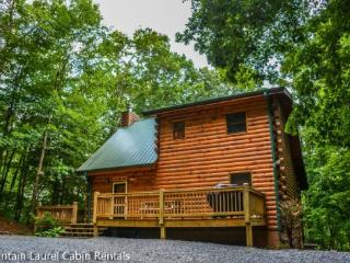 JUST ASKA BEAR! BEAUTIFUL 5 BEDROOM, 3 BATH CABIN IN THE ASKA ADVENTURE AREA WITH BACK YARD ACCESS TO THE ASKA TRAILS. WIFI, HOT TUB, AIR HOCKEY, FOOSEBALL TABLE, OUTDOOR FIRE PIT, GAS GRILL, GAS LOG FIRE PLACE, SLEEPS 8, STARTING AT $179 A NIGHT!, Blue Ridge