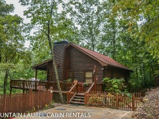 MY 401- BEAUTIFUL MOUNTAIN VIEW 2 BEDROOM 1 BATH CABIN WITH HOT TUB, WIFI, GAS GRILL, PET FRIENDLY, SAT TV, SLEEPS 6, STARTING AT $99 A NIGHT!, Blue Ridge