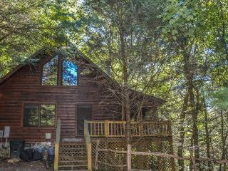 CADDIS COVE- 3 BEDROOM 2 BATH CABIN ON THE ELLIJAY RIVER, HOT TUB, FISHING DOCK, WOOD BURNING FIREPLACE, GAS GRILL, FIRE PIT BY THE RIVER, SLEEPS 8, PET FRIENDLY, STARTING AT $125 A NIGHT!, Blue Ridge