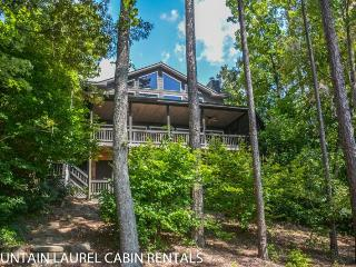 OVERLAKE COTTAGE- 4 BR/3.5 BA- LUXURY COTTAGE ON LAKE BLUE RIDGE SLEEPS 8, WIFI, LONG RANGE MOUNTAIN VIEWS, PRIVATE DOCK, HOT TUB, FIREPLACE, CHARCOAL GRILL, PROFESSIONALLY DECORATED! STARTING AT $325/NIGHT!, Blue Ridge