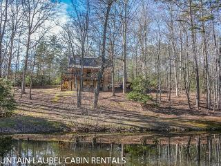 KINGDOM CABIN #1- 4BR/3BA- TOTALLY SECLUDED CABIN SLEEPS 8, PING PONG, POND, CHARCOAL GRILL, SAT TV, WIFI, WOOD BURNING FIREPLACE, PORCH SWING, STARTING AT $99/NIGHT!, Blue Ridge