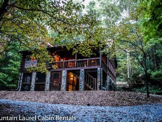 DEER MEADOW- 2BR/3BA- SECLUDED CABIN SLEEPS 8, HOT TUB, CHARCOAL GRILL, FIRE PIT, PING PONG, PET FRIENDLY, SATELLITE TV, WET BAR, GAS LOG FIREPLACE, WOOD BURNING STOVE, WIFI, WALKING DISTANCE TO THE TOCCOA RIVER! STARTING AT $125 A NIGHT!, Blue Ridge