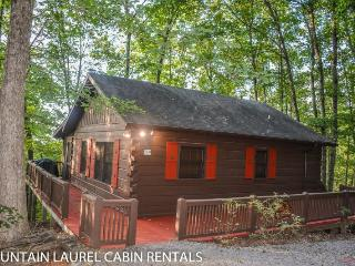 BULLWINKLE`S BUNGALOW- 2BR/1BA- COZY MOUNTAIN VIEW CABIN SLEEPS 5, SCREENED PORCH WITH PRIVATE HOT TUB, GAS GRILL, WIFI, FLAT SCREEN TV, AND PET FRIENDLY! STARTING AT $99 A NIGHT!, Blue Ridge