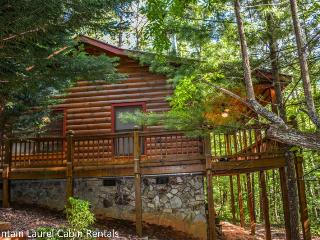 BEAR HUG CABIN- 2BR/1BA- CABIN SLEEPS 4, LOCATED WITHIN WALKING DISTANCE OF