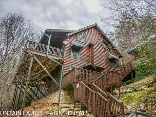 TOCCOA FISH TALES- 3BR/2BA CABIN ON THE TOCCOA RIVER TAILWATERS, WALKING, Blue Ridge