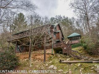 TOCCOA FISH TALES- 3BR/2BA CABIN ON THE TOCCOA RIVER TAILWATERS, WALKING