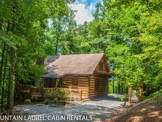 TURKEY TROT-4BR/3BA, SLEEPS 10, POOL TABLE, HOT TUB, GAS LOG FIREPLACE, LARGE DECK, SCREENED IN PORCH, STARTING AT $195/NIGHT!, Blue Ridge