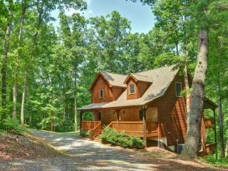 APPALACHIAN PROMISE- 3BR/3.5BA- SECLUDED CABIN SLEEPS 8, MOVIE ROOM, WIFI, POOL TABLE, SATELLITE TV, GAS LOG FIREPLACE, HOT TUB ON COVERED PORCH, GAS GRILL, AND A FIRE PIT! STARTING AT $150 A NIGHT!, Blue Ridge