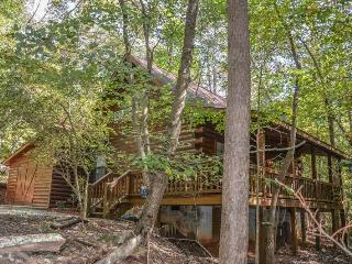 SQUIRRELED AWAY- 2 BR/2BA WITH A LOFT CABIN IN A PRIVATE WOODED SETTING, SLEEPS 6, HOT TUB, CHARCOAL GRILL, WOOD BURNING FIREPLACE, WIFI, STARTING AT $99 A NIGHT!, Blue Ridge