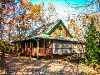 ROOSTERS ROOST- 3 BEDROOM + SLEEPING LOFT, 3 BATH, SLEEPS 10, PET FRIENDLY, POOL TABLE, WIFI, HOT TUB, GAS GRILL, STARTING AT $149/NIGHT!, Blue Ridge