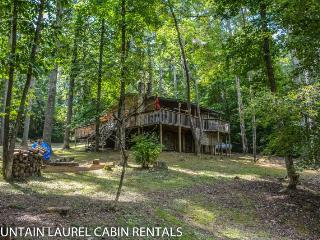 THREE QUARTER TIME- 2 BEDROOM, 1 BATHROOM, SLEEPS 6, PET FRIENDLY, HOT TUB, FIRE PIT, GAS LOG STOVE, GAS GRILL, CREEK ACCESS, PAVILION, STARTING AT $99/NIGHT, Blue Ridge