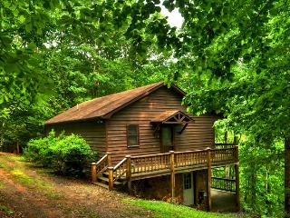A HEAVENLY VIEW- 3BR/2BA- SECLUDED CABIN WITH BEAUTIFUL MOUNTAIN VIEWS, HOT TUB, GAS GRILL, SATELLITE TV, WOOD BURNING FIREPLACE, GAME ROOM WITH AIR HOCKEY AND FOOSBALL! STARTING AT $115 A NIGHT!, Blue Ridge
