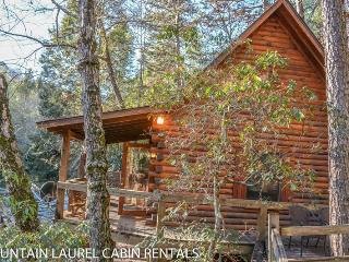 A TUMBLIN` RUN- 2BR/1 BA- CABIN LOCATED ON THE BEAUTIFUL FIGHTINGTOWN CREEK, SLEEPS 4, SATELLITE TV, WOOD BURNING STOVE, COVERED DECK WITH GAS GRILL, FIRE PIT, PET FRIENDLY-DOGS STAY FREE! STARTING AT $129 A NIGHT!, Blue Ridge