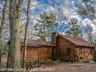 ANGLER`S REST- ADORABLE 2BR/1BA CABIN WITH A BREATHTAKING MOUNTAIN VIEW, PET FRIENDLY, WOOD BURNING FIREPLACE, HOT TUB, GAS GRILL, STARTING AT $99 A NIGHT!, Blue Ridge
